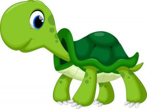 44627976-cute-turtle-cartoon.jpg